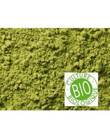 "Thè Vert biologique de Chine Matcha ""Taishan"" sachet de 100gr"