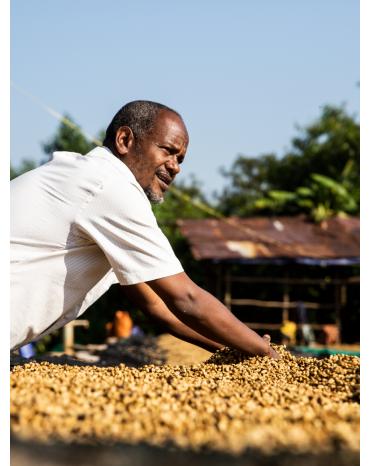 Cafés de Fôret / ETHIOPIE BIO – BOTTO JIMMA – GOMA- MOHAMED ALI