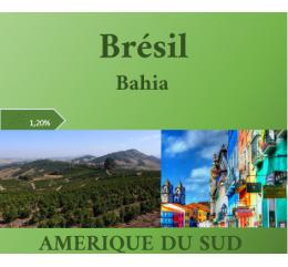 Amérique du Sud / Brésil Bahia