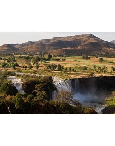 Ethiopie Moka Lekempti