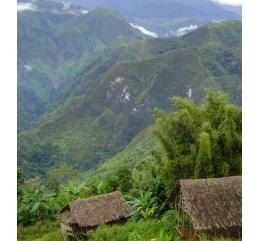 Papouasie Nouvelle-Guinée SIGRI | VALLÉE DE WAHGI |HAUTES-TERRES OCCIDENTALES