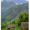 Papouasie Nouvelle-Guinée SIGRI