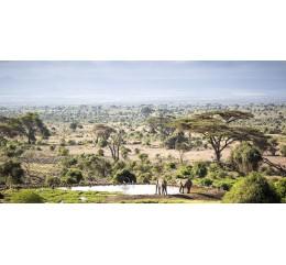 Kenya  Spécial Gourmet Gallia AA Mont Méru