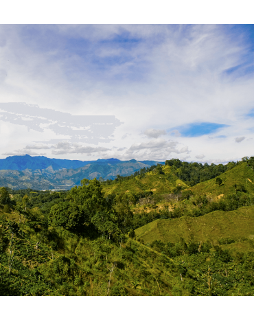 République Dominicaine - Rancho Arriba - SAN JOSÉ DE OCOA - CIBAO - IGUANA